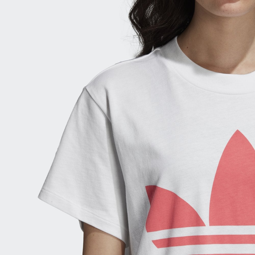 43f342da2f8 Adidas Originals Women s Big Trefoil Tee - Womens Clothing from ...